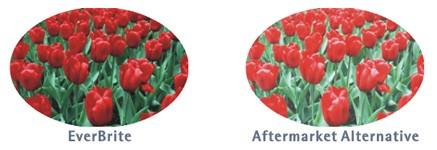 Nach tagelanger Sonneneinwirkung zeigt sich der Unterschied zwischen EverBrite-Tinte und herkömmlicher Ersatztinte.